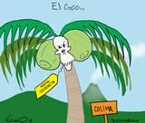 CARTÓN DE FABIO